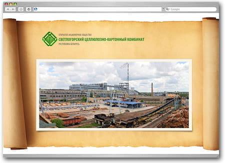 Руководство Оао Светлогорский Цкк - фото 11
